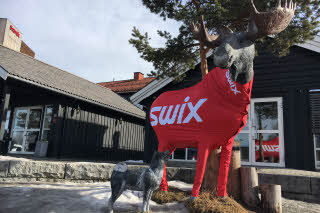 Big statue of a moose with skiing outfit
