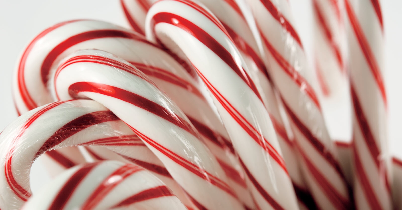 Festive red and white candy canes in a cup